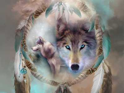 wolfeyez38
