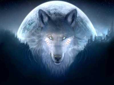 Wolfspiritt37