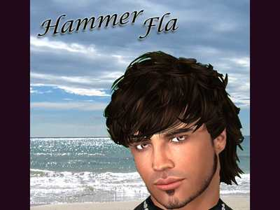 HammerFla