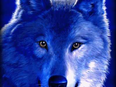Deja-Benjiwolf