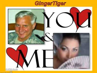 GingerTiger