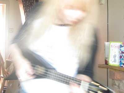 songbird11