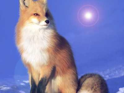 Firefox58