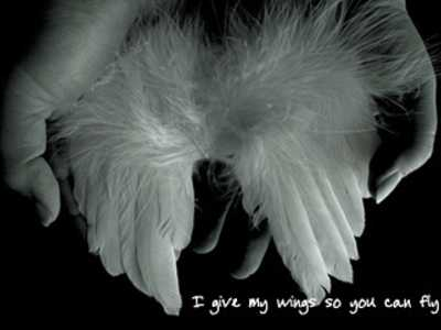 angel_wingso82